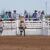 SaddleBronc 3 18 17-41