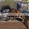 SaddleBronc 3 18 17-33
