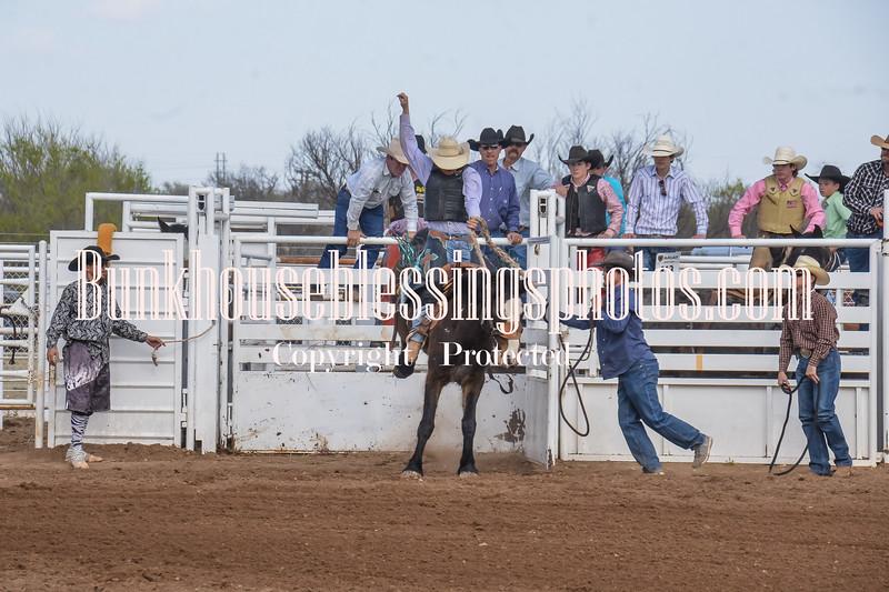 SaddleBronc 3 18 17-3