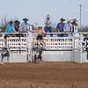 SaddleBronc 3 18 17-39