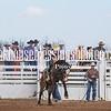 SaddleBronc 3 18 17-9