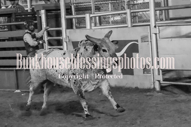XIT2017,Sat Bulls-170
