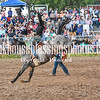 XIT2017 Sat SaddleBronc-135