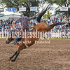 XIT2017 Sat SaddleBronc-85