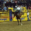 NFR2016-2-099 richmondCHAMPION