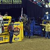 NFR2016-9-031 opening codyCABRAL rickyMORALES horse