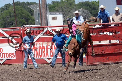 ROCKSPRINGS , TEXAS-July 2,3 , 2016--PBR Plus Celebration