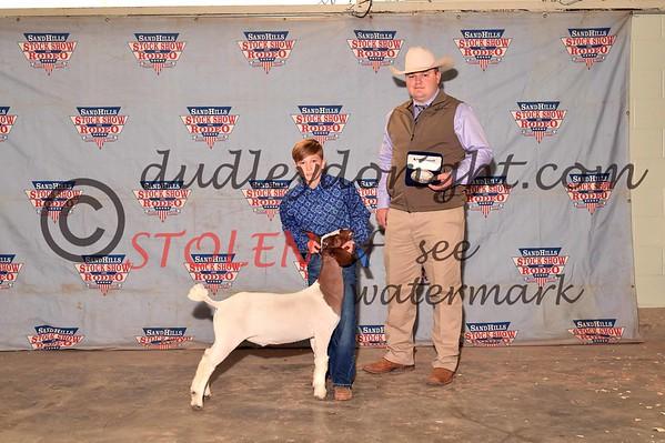 Odessa2017-Goats-008 JrShowmanship westnHENDRIX
