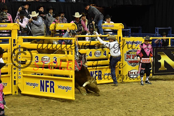 NFR2017-5-224 tyWALLACE
