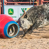 7_13_19_Bar-None Roughstock Rodeo_Bulls-Sec1_Kay Miller (55 of 528)