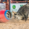7_13_19_Bar-None Roughstock Rodeo_Bulls-Sec1_Kay Miller (56 of 528)