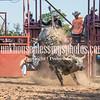 7_13_19_Bar-None Roughstock Rodeo_Bulls-Sec1_Kay Miller (44 of 528)