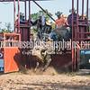 7_13_19_Bar-None Roughstock Rodeo_Bulls-Sec1_Kay Miller (30 of 528)