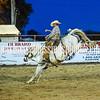 7_13_19_Bar-None Roughstock Rodeo_Broncs_ShortGo_Kay Miller (14 of 48)