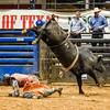 6-8-19 MesquiteRodeo BullRiding-31