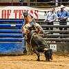 6-8-19 MesquiteRodeo BullRiding-24