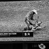 08_10_19_Mesquite_TD_Weldon Watson_K Miller (173 of 8)