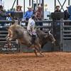PPCLA PRCA RODEO 5 10 19 BullsSec1-54