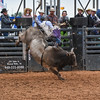 PPCLA PRCA RODEO 5 10 19 BullsSec1-78