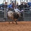 PPCLA PRCA RODEO 5 10 19 BullsSec1-79