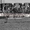 PPCLA PRCA Rodeo 5 10 19 SaddleBroncReride-36