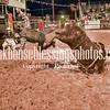 PPCLA PRCA Rodeo 5 11 19 Bulls Sec2-73