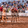 PPCLA PRCA Rodeo 5 11 19 Saddle Broncs-67