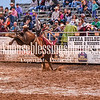 PPCLA PRCA Rodeo 5 11 19 Saddle Broncs-46