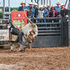 PPCLA PRCA Rodeo 5 9 19 Bulls Sec1-53