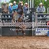 PPCLA PRCA Rodeo 5 9 19 Bulls Sec1-13