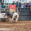 PPCLA PRCA Rodeo 5 9 19 Bulls Sec1-54