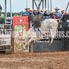PPCLA PRCA Rodeo 5 9 19 Bulls Sec1-50