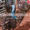 PPCLA PRCA Rodeo 5 9 19 Bulls Sec2-17