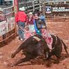 PPCLA PRCA Rodeo 5 9 19 Bulls Sec2-84