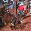 PPCLA PRCA Rodeo 5 9 19 Bulls Sec2-28