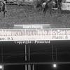 PPCLA PRCA Rodeo 5 9 19 TeamRoping-58