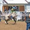 THSRA,3 17 19 BullRiding-20
