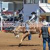 THSRA,3 17 19 SaddleBroncRiding-6