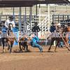 THSRA,3 17 19 SteerWrestling-8