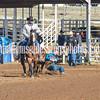 THSRA,3 17 19 SteerWrestling-12