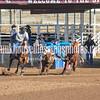 THSRA,3 17 19 SteerWrestling-4