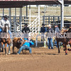 THSRA,3 17 19 SteerWrestling-9