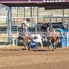 THSRA,3 17 19 SteerWrestling-24