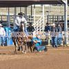 THSRA,3 17 19 SteerWrestling-11