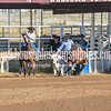 THSRA,3 17 19 SteerWrestling-20