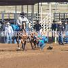 THSRA,3 17 19 SteerWrestling-10