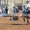 THSRA,3 17 19 SteerWrestling-14