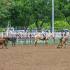 2019_Jr XIT Rodeo_#3_Boys Str breakaway-35