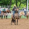 2019_XIT Jr Rodeo_ #4_Boys Steer Stop-26