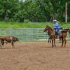 2019_XIT Jr Rodeo_ #4_Boys Steer Stop-44